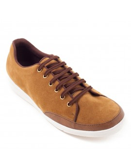 Levine Casual Shoes - Tan